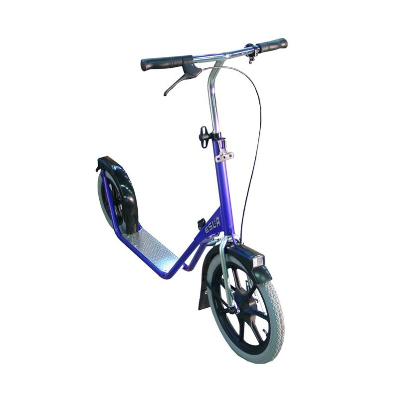 esla scooter blauw